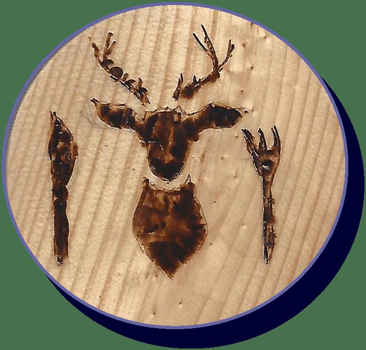 wildkochkurs